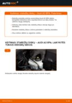AUDI A3 Ašies montavimas keitimas: nemokamas pdf