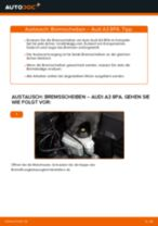 Schritt-für-Schritt-PDF-Tutorial zum Keilrippenriemen-Austausch beim Octavia 1z5