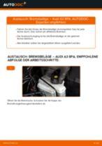 Wie Bremsklötze AUDI A3 auswechseln und einstellen: PDF-Anleitung