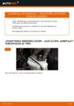 Udskift bremseklodser bag - Audi A3 8PA | Brugeranvisning