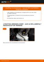 Lær hvordan du fikser Bremseklosser foran og bak AUDI problemet