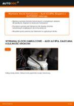 Jak wymienić klocki hamulcowe tył w Audi A3 8PA - poradnik naprawy