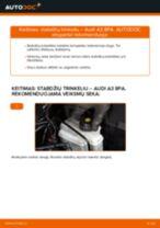 Kaip pakeisti ir sureguliuoti Rankinio Stabdžio Trosas AUDI A3: pdf pamokomis