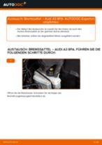 Wie Audi A3 8PA Bremssattel hinten wechseln - Schritt für Schritt Anleitung