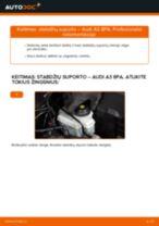 Automechanikų rekomendacijos AUDI Audi A3 8pa 1.9 TDI Pasukimo trauklė keitimui