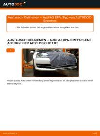 Wie der Wechsel durchführt wird: Keilrippenriemen 2.0 TDI 16V Audi A3 8P tauschen