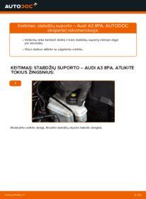 Kaip atlikti keitimą: 2.0 TDI 16V Audi A3 8pa Stabdžių apkaba