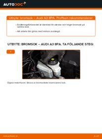 Så byter du Bromsok på 2.0 TDI 16V Audi A3 8pa