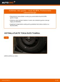 Kaip atlikti keitimą: 2.0 TDI 16V Audi A3 8pa Rato guolis
