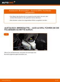 Wie der Wechsel durchführt wird: Bremssattel 2.0 TDI 16V Audi A3 8pa tauschen