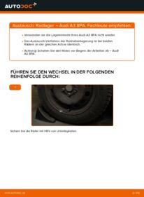 Wie der Wechsel durchführt wird: Radlager 2.0 TDI 16V Audi A3 8pa tauschen