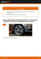 Reparație pas cu pas Audi A4 B8 Sedan - carte tehnica