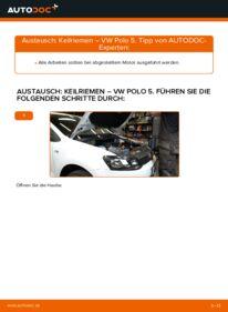 Wie der Wechsel durchführt wird: Keilrippenriemen 1.6 TDI VW Polo 5 Limousine tauschen