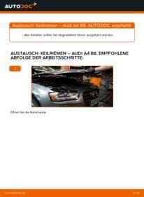 Wie der Wechsel durchführt wird: Keilrippenriemen 2.0 TDI Audi A4 B8 Limousine tauschen