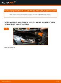 Vervangen: Multiriem AUDI A4