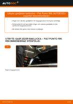 Byta gasfjäder baklucka på Fiat Punto 199 – utbytesguide
