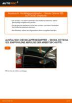 Schritt-für-Schritt-PDF-Tutorial zum Bremsbeläge-Austausch beim Opel Omega B Caravan