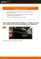 Recomandările mecanicului auto cu privire la înlocuirea SKODA Octavia 1z5 1.6 TDI Lamela stergator
