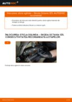 Cum se înlocuiesc și se ajustează Indicator de uzura placute frana SKODA OCTAVIA: manual pdf