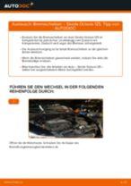 Bremsscheiben vorne selber wechseln: Skoda Octavia 1Z5 - Austauschanleitung