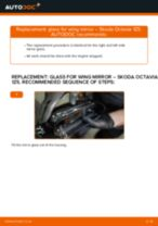 Сhanging Glass For Wing Mirror left and right on SKODA OCTAVIA: online tutorial