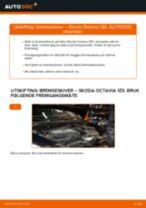 Veiledning på nettet for å skifte Radiator motor i Peugeot 206 cc 2d selv