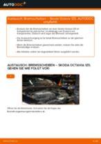 Bremsscheiben hinten selber wechseln: Skoda Octavia 1Z5 - Austauschanleitung