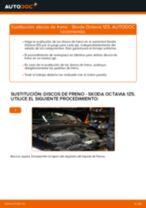 PDF manual de reemplazo: Disco de freno SKODA Octavia II Combi (1Z5) traseras y delanteras