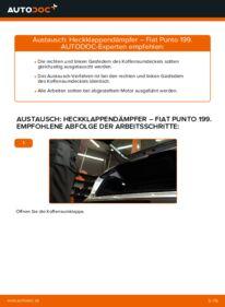 Wie der Wechsel durchführt wird: Heckklappendämpfer 1.3 D Multijet Fiat Punto 199 tauschen