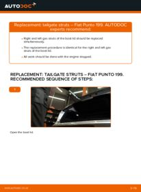 How to carry out replacement: Tailgate Struts on 1.3 D Multijet Fiat Punto 199