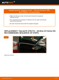 How to carry out replacement: Tailgate Struts on 1.9 TDI Octavia 1z5