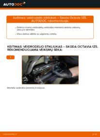 Kaip atlikti keitimą: 1.9 TDI Octavia 1z5 Veidrodelio Stikliukas