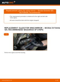 How to carry out replacement: Glass For Wing Mirror on 1.9 TDI Octavia 1z5