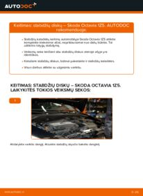 Kaip atlikti keitimą: 1.9 TDI Octavia 1z5 Stabdžių diskas