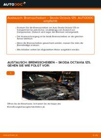 Wie der Wechsel durchführt wird: Bremsscheiben 1.9 TDI Skoda Octavia 2 Combi tauschen