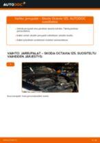 PDF opas CARISMA -huollosta