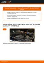 Autószerelői ajánlások - SKODA Octavia 1z5 1.6 TDI Törlőlapát csere