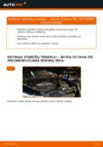 Žingsnis po žingsnio pakeiskite SKODA OCTAVIA Combi (1Z5) Stabdžių Kaladėlės PDF vadovas