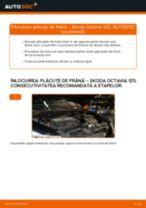 Manual de reparație SKODA OCTAVIA - instrucțiuni pas cu pas și tutoriale