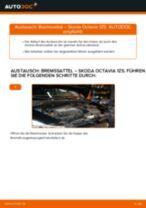 Wie Bremssattel Reparatursatz beim Symbol / Thalia III (L8) wechseln - Handbuch online