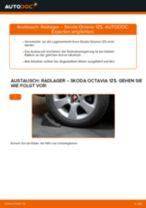 Auswechseln Umlenk / Führungsrolle, Zahnriemen SKODA OCTAVIA: PDF kostenlos