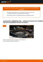 Serviceanleitung im PDF-Format für ROOMSTER