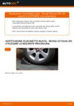 Come cambiare Candele motore benzina Fiat Ducato 244 Van - manuale online