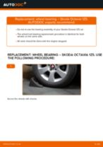 Step by step PDF-tutorial on Brake Discs SKODA OCTAVIA Combi (1Z5) replacement
