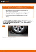 Εγχειρίδιο PDF στη συντήρηση SUPERB