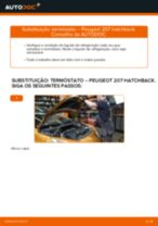 Recomendações do mecânico de automóveis sobre a substituição de PEUGEOT PEUGEOT 207 (WA_, WC_) 1.6 HDi Correia Trapezoidal Estriada