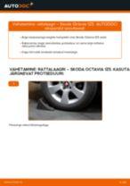 SKODA omaniku käsiraamat pdf