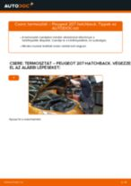 PEUGEOT 207 hibaelhárítási kézikönyv