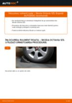 Cum să schimbați: rulment roata din spate la Skoda Octavia 1Z5 | Ghid de înlocuire