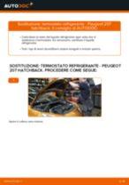 Istruzioni gratuite online su come rinnovare Ganasce Freno a Mano PEUGEOT 207 (WA_, WC_)